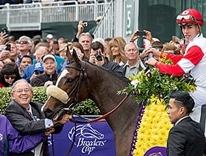 Stephanie's Kitten following her Breeders' Cup Filly and Mare Turf win.