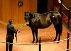 Dam of Hootenanny Brings $1.5M at F-T