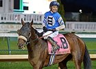 Effinex Named 2015 NY-Bred Horse of Year