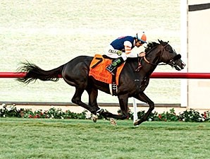 Midnight Storm wins the 2015 Seabiscuit Handicap.