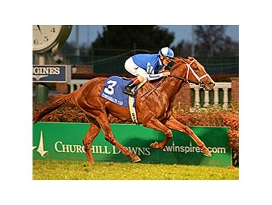"Almasty bounds home a winner in the Commonwealth Turf.<br><a target=""blank"" href=""http://photos.bloodhorse.com/AtTheRaces-1/At-the-Races-2015/i-HStDdX6"">Order This Photo</a>"