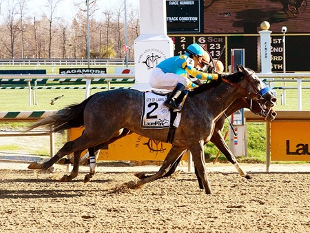 El Kabeir nosed out Roxbury N Overton in the the City of Laurel Stakes at Laurel Park.
