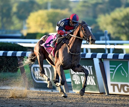Tonalist with jockey Joel Rosario wins the 96th running of The Jockey Club Gold Cup at Belmont Park Sept. 27, 2014.  Photo by Skip Dickstein