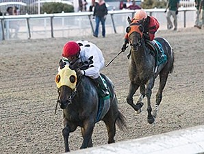 The Pickett Factor, a 3-year-old Gold Tribute gelding, pulled away late from Mobile Bay to win the Louisiana Champions Day Classic Dec. 12 at Fair Grounds