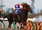 Sambista wins the Japan Champions Cup.