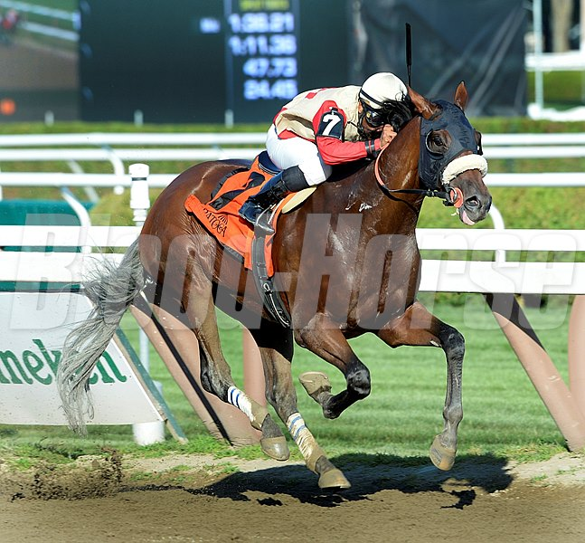 Wicked Strong with jockey Rajiv Maragh wins the 51st running of the Jim Dandy Saturday afternoon July 26, 2014 at the Saratoga Race Course in Saratoga Springs, N.Y.    
