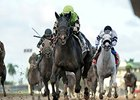 "Valid<br><a target=""blank"" href=""http://photos.bloodhorse.com/AtTheRaces-1/At-the-Races-2015/i-zzBghFb"">Order This Photo</a>"