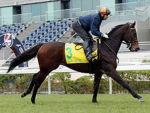 Green Mask and jockey Joao Moreira.