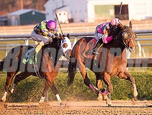 Lady Sabelia comes home strong to win the Willa On the Move.