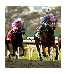 Mana Strike won the Gold Rush Stakes over Golden Gate's synthetic main track Dec. 5.