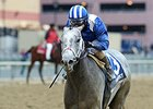 Mohaymen will make his sophomore debut in the Holy Bull Stakes.