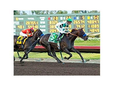 Mor Spirit won the Los Alamitos Futurity on Dec. 19.