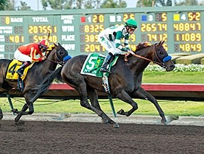 Mor Spirit wins the 2015 Los Alamitos Futurity.