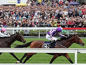 Highland Reel wins the 2015 Hong Kong Vase.
