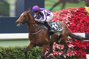 Highland Reel completed a stellar 3-year-old season in the Vase (HK-I), dueling Flintshire into submission with an impressive stretch run. The Irish-bred Galileo colt gave trainer Aidan O'Brien his first winner in the Hong Kong International Races as Moore booted him home first by 1 1/2 lengths over the runner-up in the Qatar Prix de l'Arc de Triomphe (Fr-I). Dariyan was along to give France the second and third placings in the 2,400-meter (about 1 1/2 miles) event.