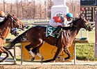 Awesome Speed won the James F. Lewis III Stakes on November 14.