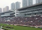 Attendance for the Hong Kong International Races Dec. 13 at Sha Tin was up 9% from last year to more than 85,000