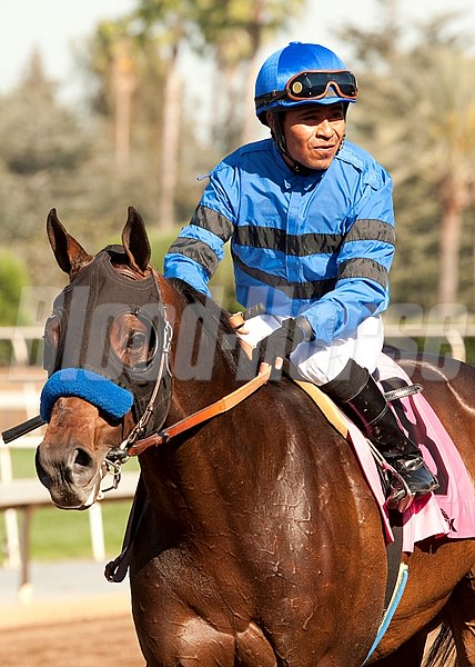 Westrock Stables' Sky Kingdom and jockey Martin Garcia win the Grade III $100,000 Tokyo City Cup Saturday, March 28, 2015 at Santa Anita Park, Arcadia, CA 