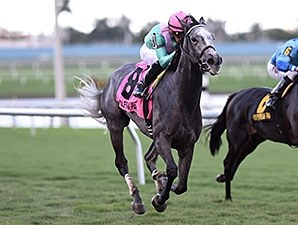 Tuttipaesi wins the 2015 South Beach Stakes.