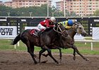 Calinico (inside) gets the best of Huitlacoche to take the Clasico del Caribe Dec. 13 in Panama