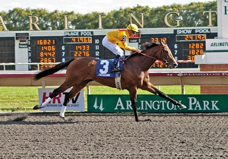 PATAKY KID wins the Arlington-Washington Futurity Stakes (Grade III) at Arlington Park on 9-8-12 Garrett K. Gomez up.
