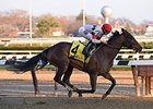 "Room for Me came rolls to the win in the Garland of Roses Stakes.<br><a target=""blank"" href=""http://photos.bloodhorse.com/AtTheRaces-1/At-the-Races-2015/i-sX8wfj5"">Order This Photo</a>"