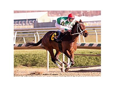 Cathryn Sophia won the Gin Talking Stakes at Laurel Park by 16 1/4 lengths Dec. 5.