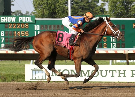 Micromanage #8 with Joe Bravo riding won the $100,000 Long Branch Stakes at Monmouth Park.  7/7/13  Photo By William Osborn/EQUI-PHOTO