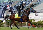 Mongolian Saturday jogs at Sha Tin Dec. 7.
