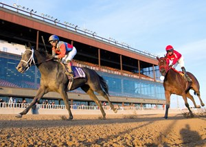 Silver Lode overpowers the rest of the field in the Pat Whitworth Illinois Debutante at Hawthorne Racecourse.