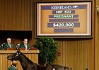 Mother Ruth brought $420,000 during the second session of the Keeneland January horses of all ages sale Jan. 12.