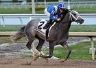 "Mohaymen rolls to victory in the Holy Bull Stakes.<br><a target=""blank"" href=""http://photos.bloodhorse.com/AtTheRaces-1/At-the-Races-2016/i-QnMhGP8"">Order This Photo</a>"