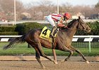 "Flexibility comes home strong to win the Jerome Stakes.<br><a target=""blank"" href=""http://photos.bloodhorse.com/AtTheRaces-1/At-the-Races-2016/i-GBbQFCC"">Order This Photo</a>"