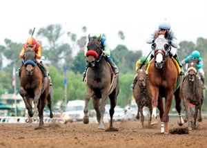 California Chrome and jockey Victor Espinoza (right) outleg Hoppertunity (left) and Imperative to win the $200,000 San Pasqual Stakes (gr. II)  at Santa Anita Park.