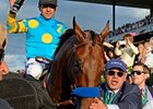 Ahmed Zayat with his homebred American Pharoah.
