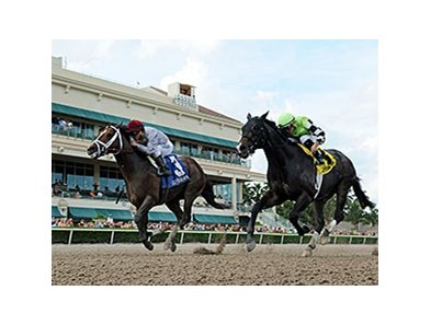 "Mshawish (left) fights off Valid to win the Hal's Hope Stakes.<br><a target=""blank"" href=""http://photos.bloodhorse.com/AtTheRaces-1/At-the-Races-2016/i-FnqMs9n"">Order This Photo</a>"