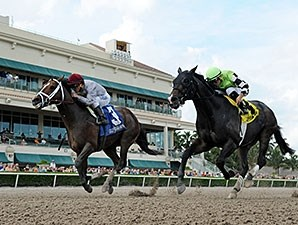 Mshawish (left) fights off Valid to win the Hal's Hope Stakes.