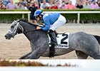 Mohaymen winning the Holy Bull Stakes.
