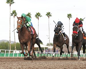 Absolutely Cool is victorious in the Hank Mills Sr. Stakes at Turf Paradise in Phoenix, Arizona.