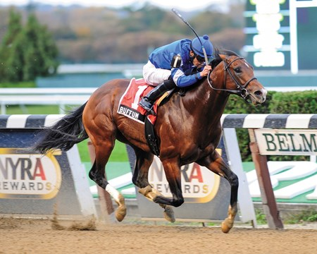 Godolphin Racing's Buffum   came out running and never stopped as he posted a gate-to-wire score in the $150,000 Bold Ruler Handicap (gr. III) at Belmont Park Oct. 27, 2012.