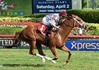 Sandiva won the Marshua's River Stakes at Gulfstream on January 9.
