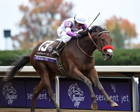 Nyquist with jockey Mario Gutierrez up, wins the Breeder's Cup Sentient Jet Juvenile race at Keeneland Race Track on Oct. 31, 2015.
