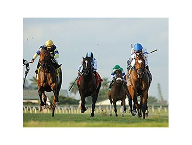 "Heart to Heart (right) leads them home in the Ft. Lauderdale.<br><a target=""blank"" href=""http://photos.bloodhorse.com/AtTheRaces-1/At-the-Races-2016/i-SdrkGv9"">Order This Photo</a>"