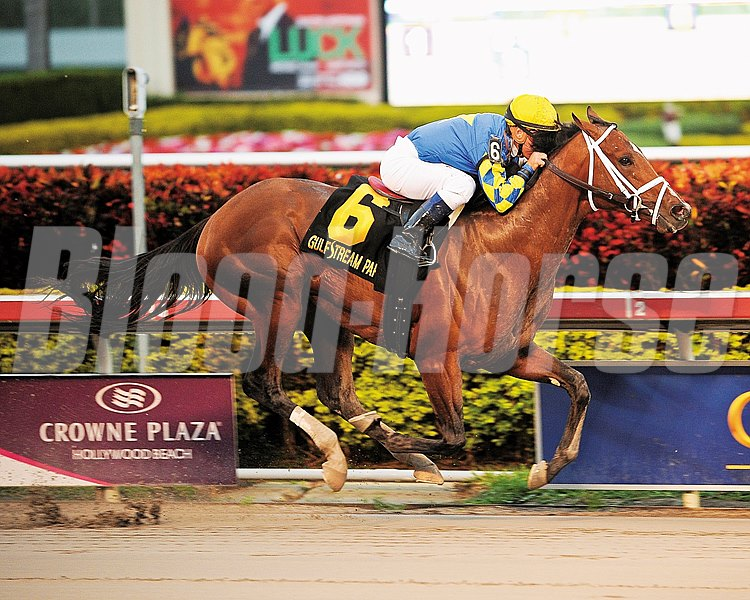 Algorithms overtook juvenile champion Hansen approaching mid-stretch en route to an easy victory in the $400,000 Holy Bull Stakes (gr. III), handing the odds-on favorite the first defeat of his career Jan. 29, 2012, at rainy Gulfstream Park.