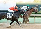 Haveyougoneaway fights off favorite Sarah Sis to win the American Beauty Stakes.