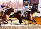 Vorticity won the 2016 Marylander Stakes at Laurel Park.
