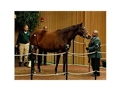 Roan Inish, winner of the Woodbine Oaks, sells in foal to Arch for a session-topping $500,000