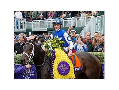 Tepin wins the 2015 Breeders' Cup Mile.