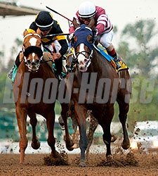 Lost Bus wins the 2016 Santa Monica Stakes.