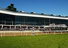Laurel Park's Fall Stakes Schedule Set
